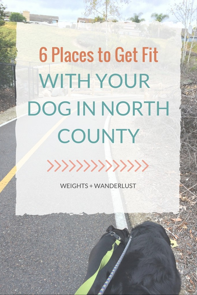 6 Places to Get Fit With Your Dog in North County | @wanderweights | www.weightsandwanderlust.com